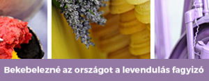 lev_cikk1